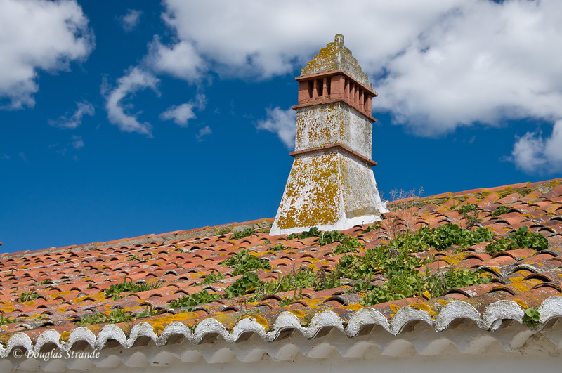 Wed 3/16 at the horse-breeding farm: Tile roof and old chimney