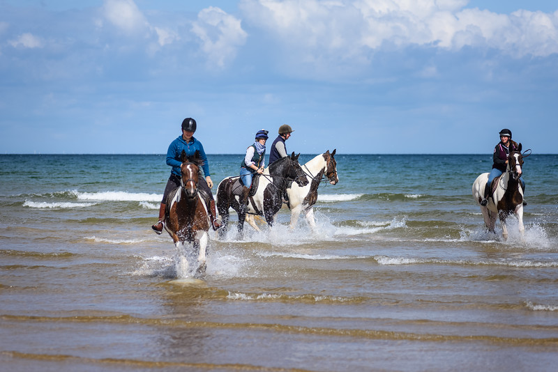 Holkham Beach Ride August 2019 (36).jpg