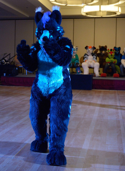 Motor City Furry Con 2014