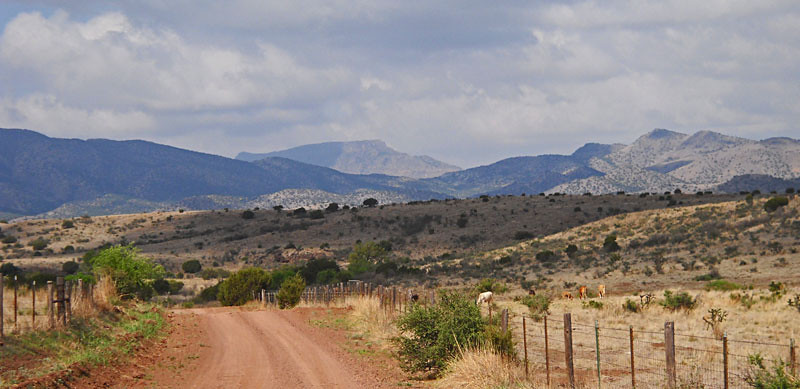 Road-to-Woodard-Ranch-2.jpg