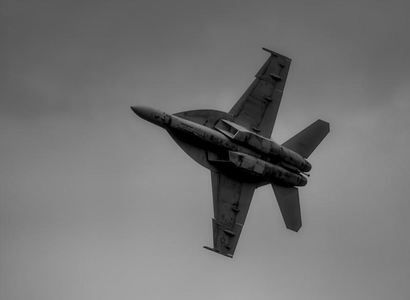 F18E-SuperHornet-004_BW