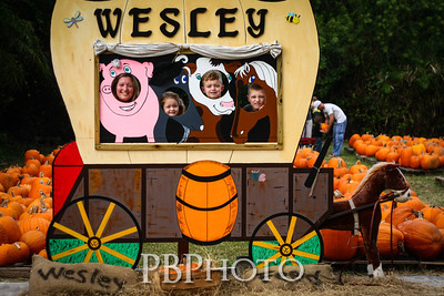 PumpkinPatch2012