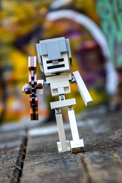 21148 - Minecraft Series