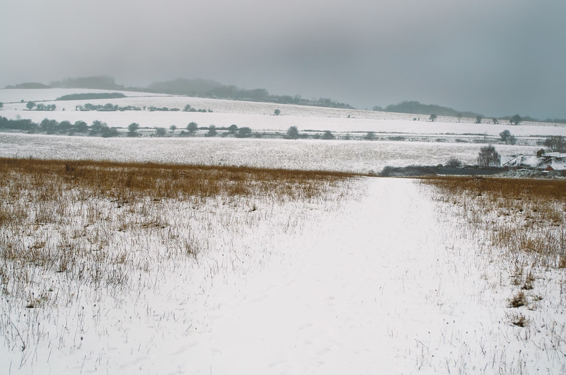 South Downs Snow