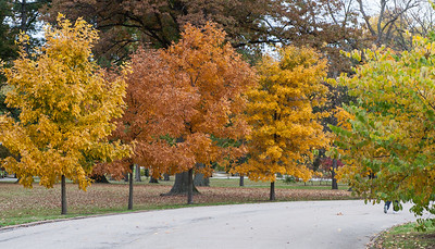 Tower Grove Park October 25 2009