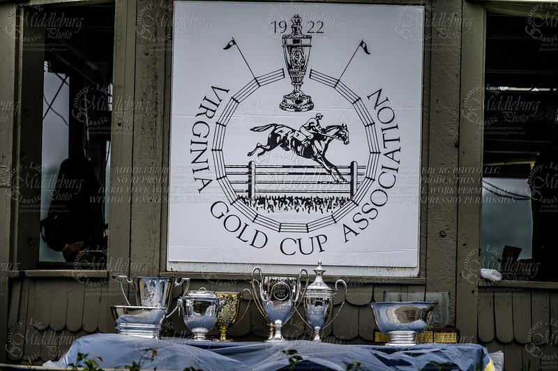2021 Virginia Gold Cup