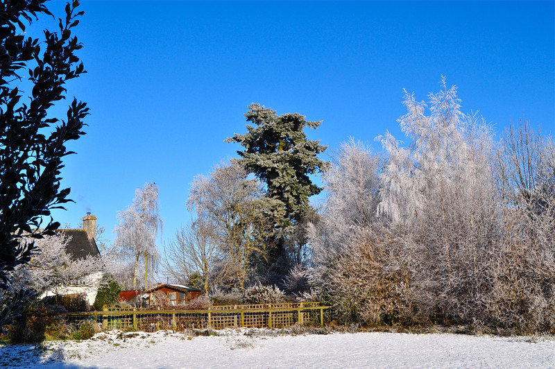 Winter Motte