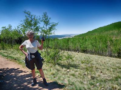 Colorado Trail at Kenosha Pass - 6.11.13