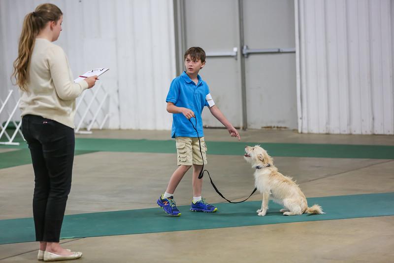 Dog Show-28.jpg