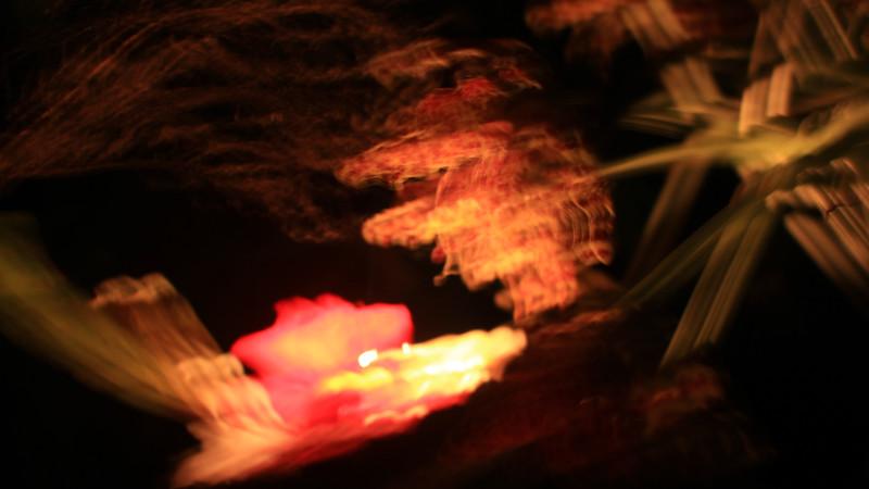 ترکیب گل شب - Elleanthus & Co at night
