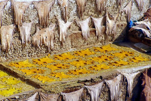 Morocco - Feb/Mar 2006