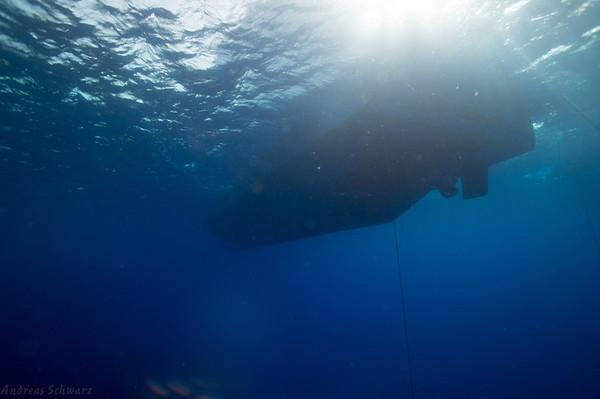 Egypt 2012 Seven Seas
