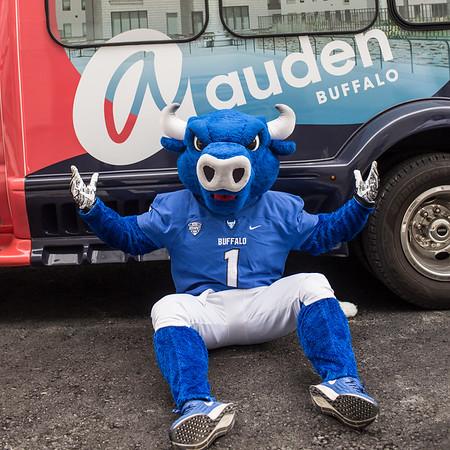 UB Auden & Athletics