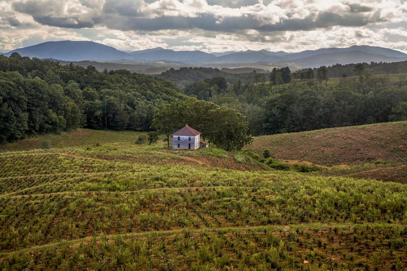 Blue Ridge Farm