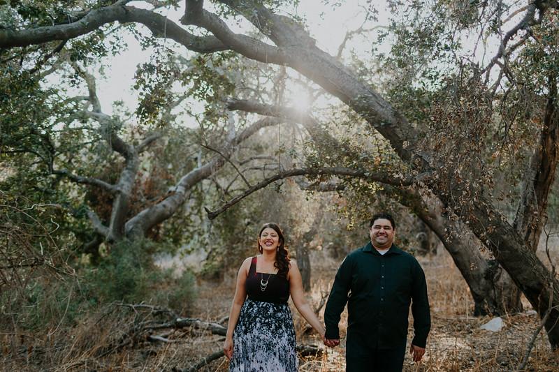 Swapna and Atul Engagement-23.jpg