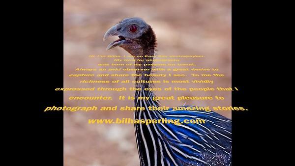 Bilha Sperling Memorial slideshow