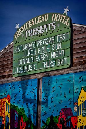 Reggae Fest 2015