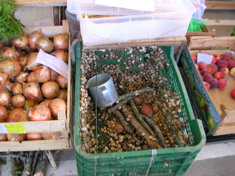 lagos farmers market june 6.2008 038.jpg