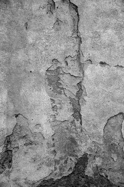 35-Lindsay-Adler-Photography-Firenze-Textures-BW.jpg