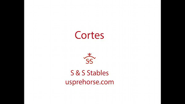 S&S Stables