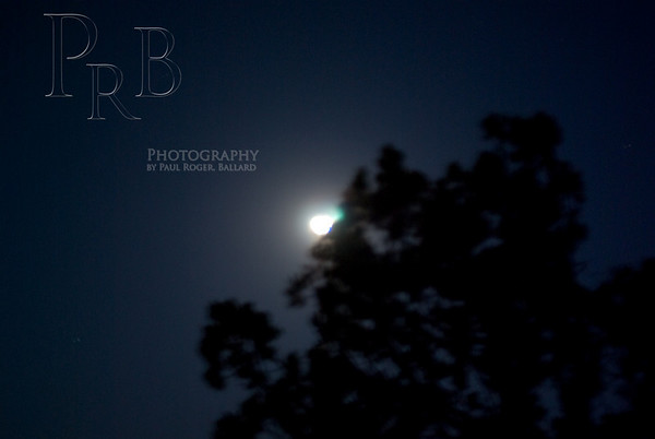 Moon Light Walk