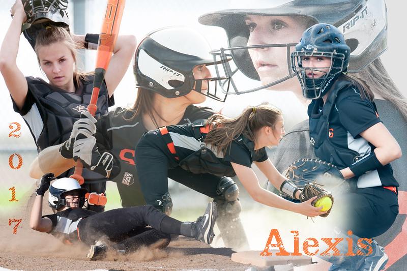 AlexisWise2017 36x24_3.jpg