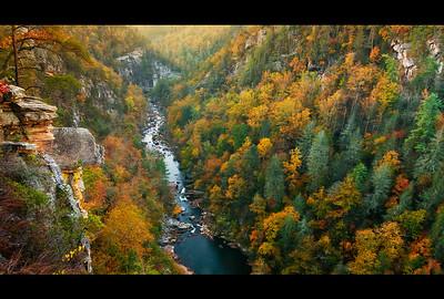 Georgia Landscapes