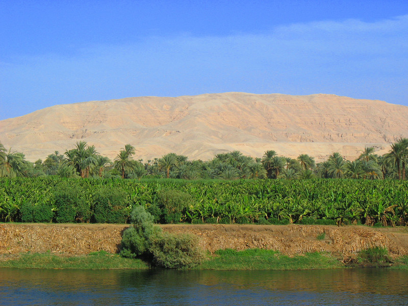 Egypt-434.jpg