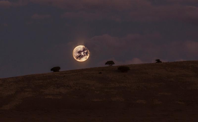 Moon 3.jpg