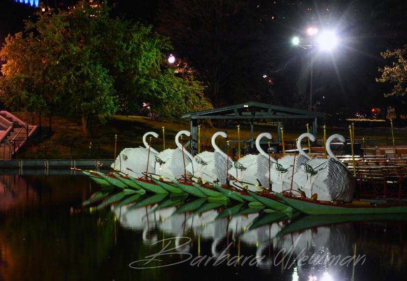 SwanBoatsinBostonWtrmk.jpg