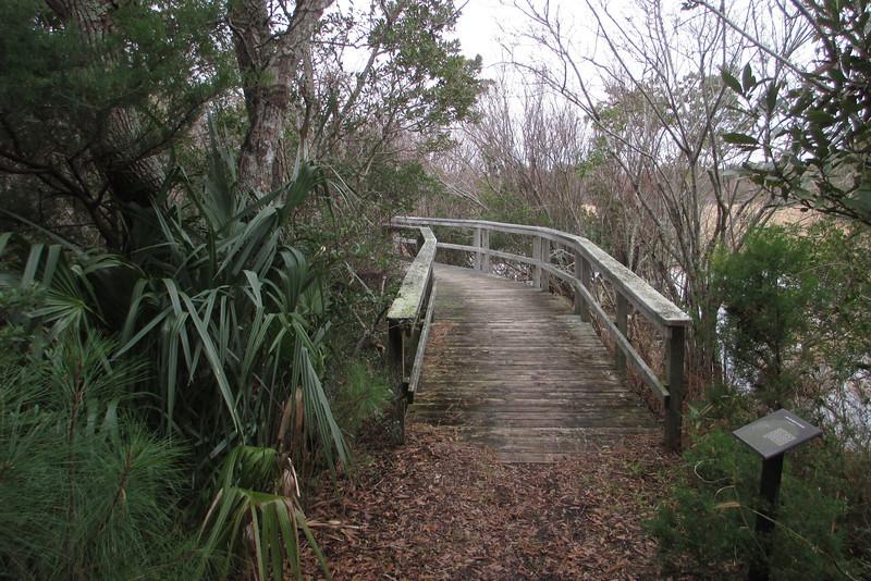 Cape Hatteras National Seashore - Buxton Woods Trail  (1.0 mile; d=1.05)