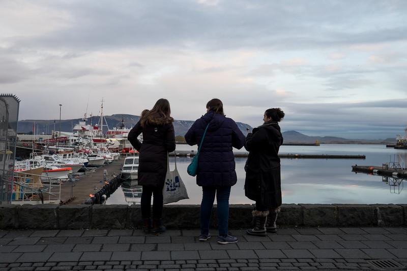 Iceland-161210-82.jpg
