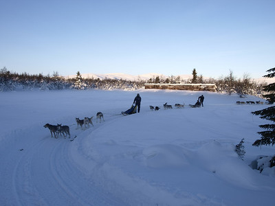 Dog sled Dec 28th 2012