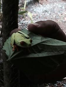 2014 Nicaragua