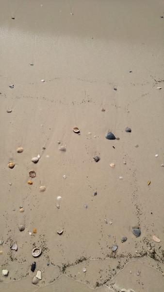 GulfShoresBeach15.jpg