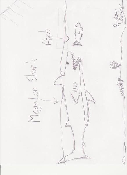 drawings01.jpeg