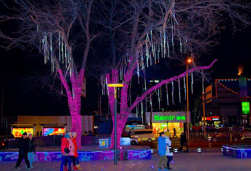 Wudaokou Beijing December 28,2012 ©Lewis Sandler