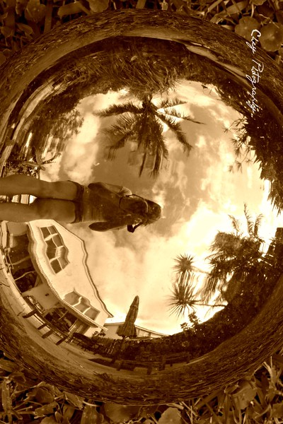 Florida3A.jpg