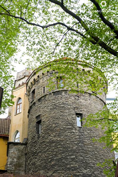 Castle turret.jpg