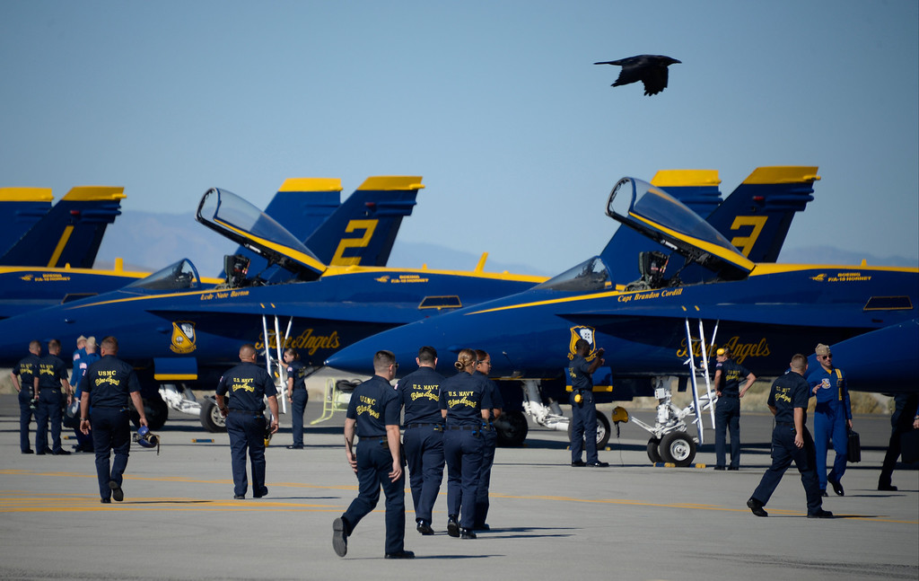 . March 19,2014. Lancaster CA.  A black crow does a low flyby over the Blue Angels jet planes as they arrived at Fox field Wednesday morning. The Los Angels County air show with the Blue Angels will happen this Friday and Saturday at Fox Field.  Photo   by Gene Blevins/LA DailyNews
