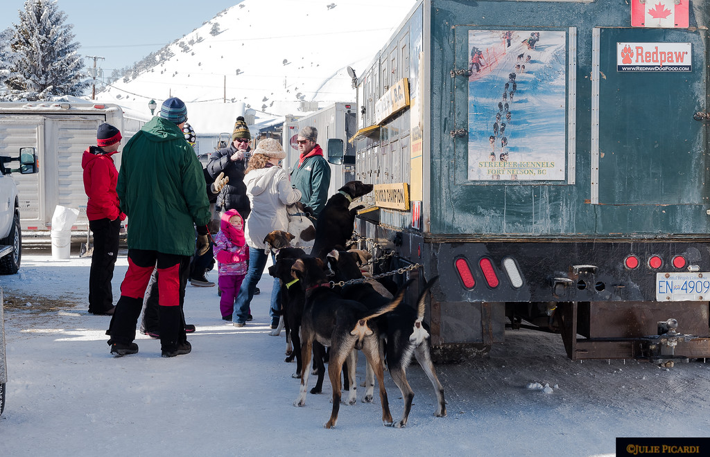 A meet and greet with all the mushers and their dogs the morning preceding the race.