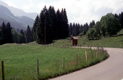 2000 Schwarzsee Fipl