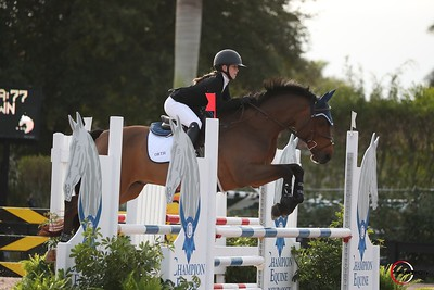 Allie Orth - Wellington Equestrian Festival 2021