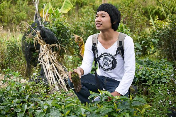 Akha Ama Coffee Journey