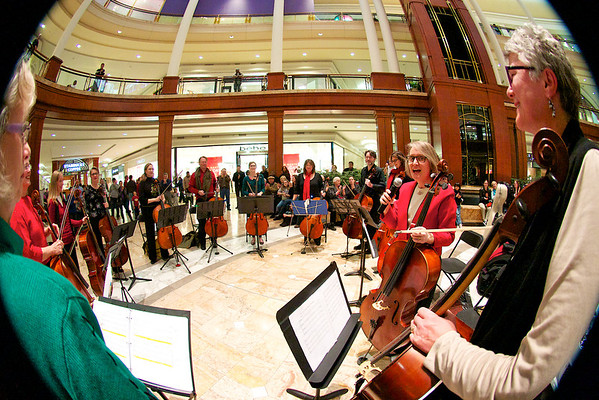 12-10-11 Atlanta Cello Project Holiday Concert at Phipps Plaza