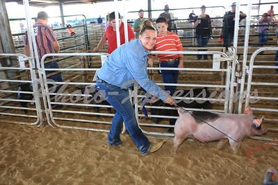 Swine Awards