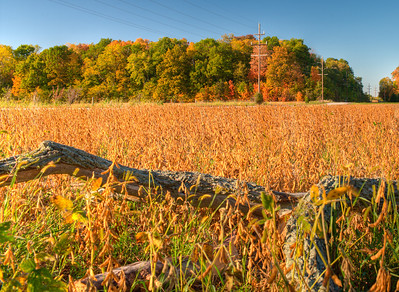 Noblesville Farm - October 08
