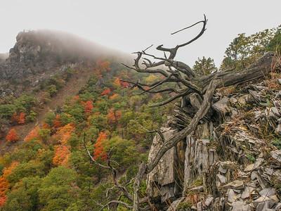 smoke hole canyon, october 2005