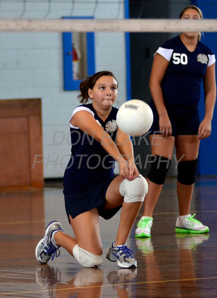 Holy Angels/All Saints Volleyball