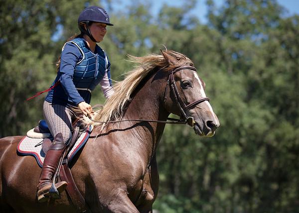 HC Equestrian/EA Camp 2016
